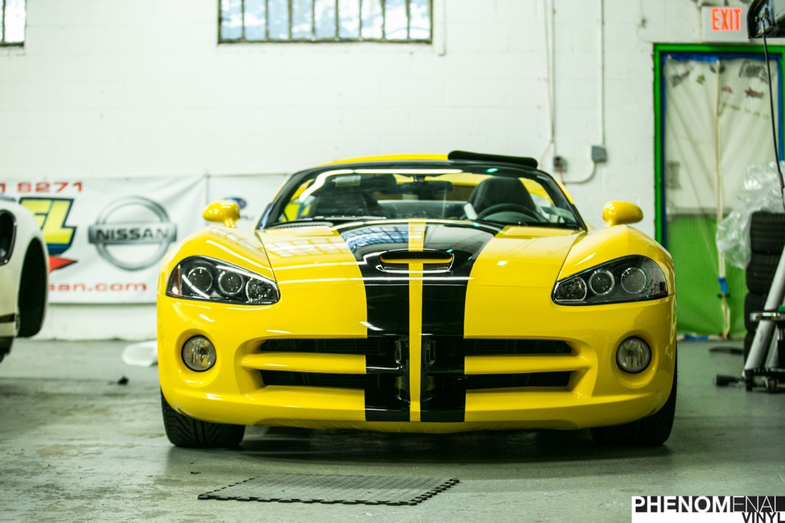 Yellow Viper Stripes